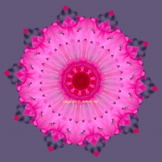 Pink Rhododendron Flower Mandala